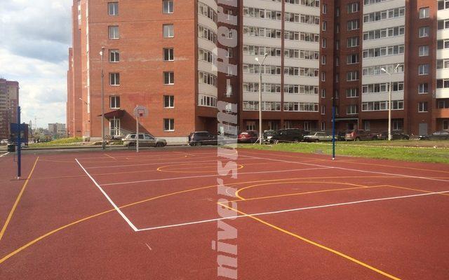 Спортивная дворовая площадка. Ул. Холмогорская 4б